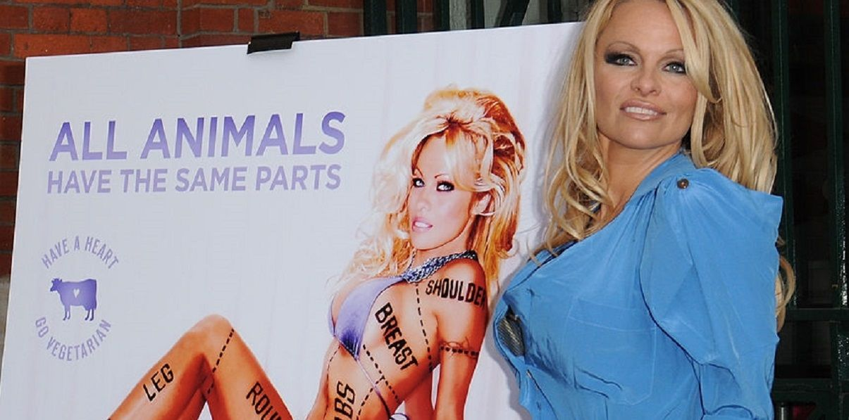 The 20 Sexiest Celebrity Vegetarians