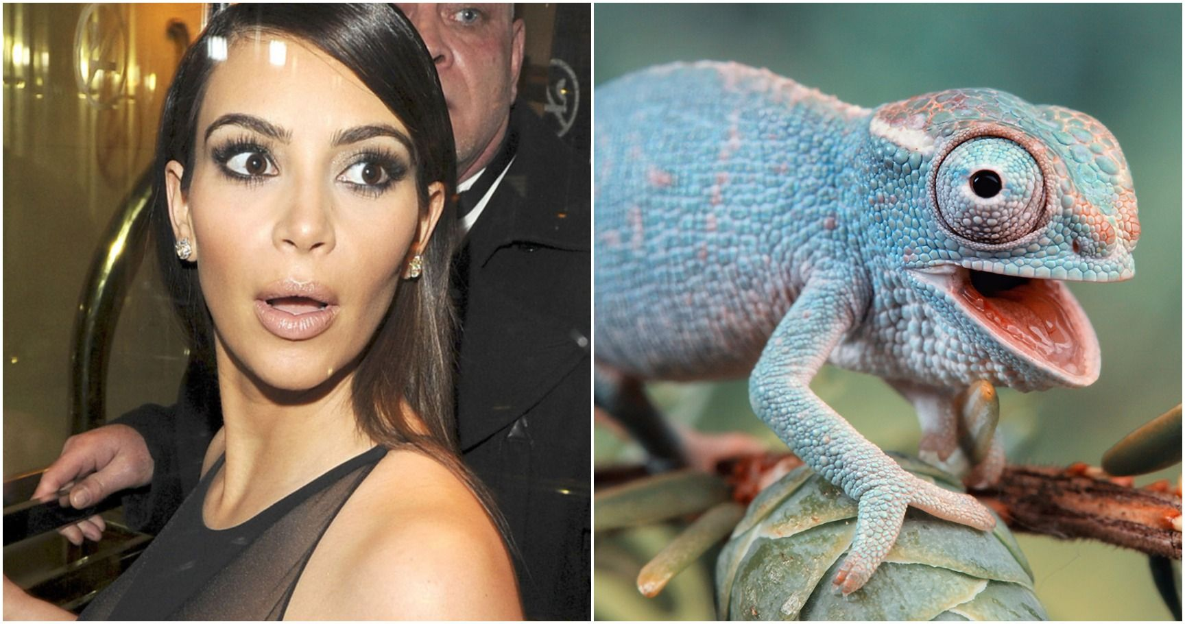 15 Celebrities & Politicians That Are Rumored To Be Reptiles