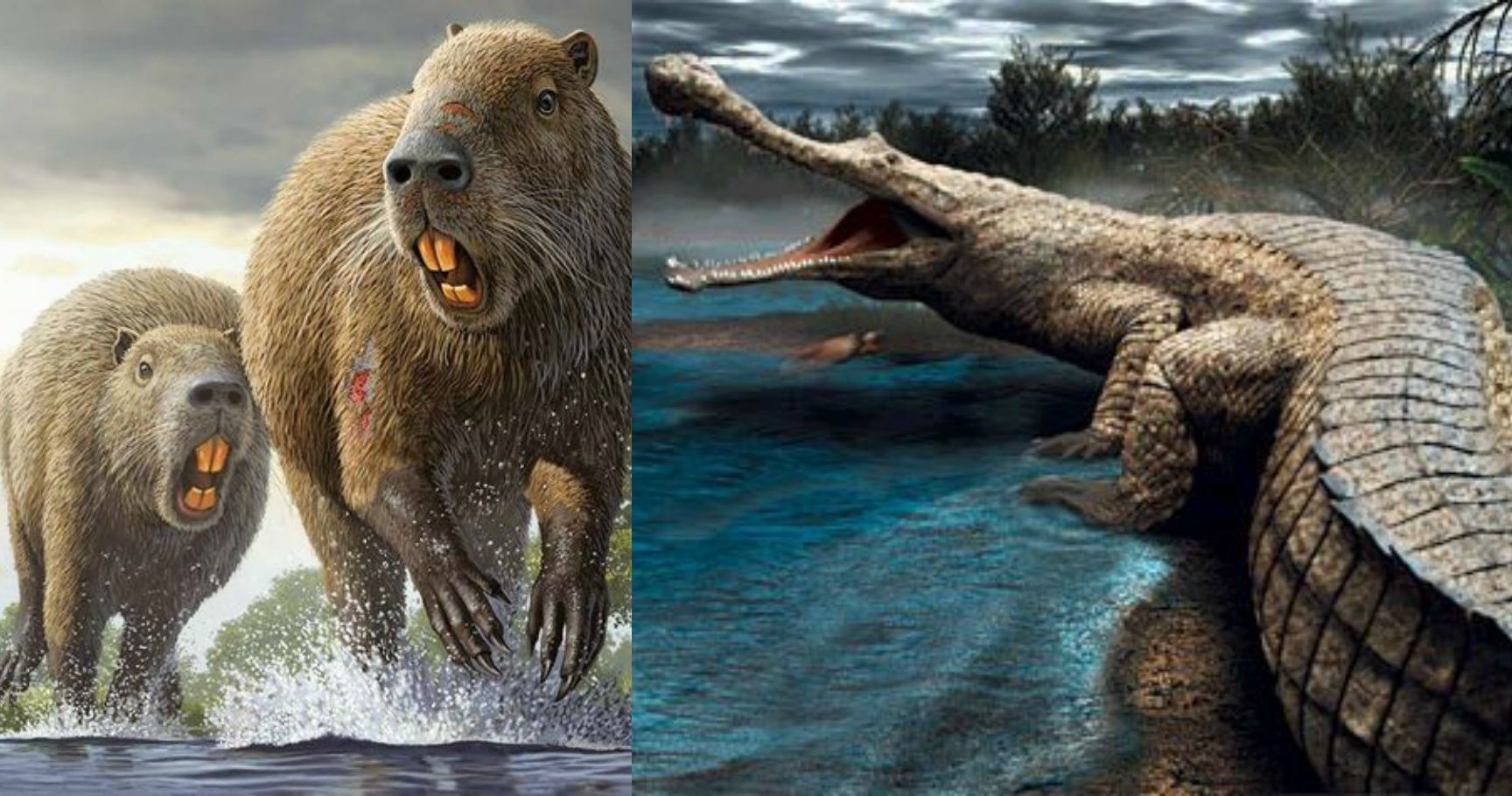 animals extinct glad largest re were