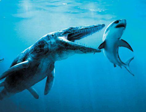 dinosaurio-descubierto-nombre-Pliosaurus-funkei_LRZIMA20121104_0055_11